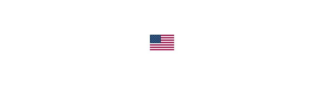 Aion - امریکا