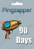Pingzapper 90 Days